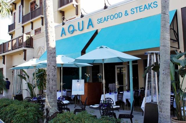 Aqua Michael D Amore Official Website